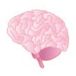 微小脳梗塞